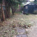Garden clearance at Barnet, Northwest London